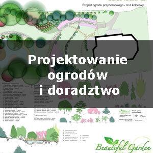 projektowanie_1